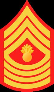 Marines Corp Ranks - E8 Master Gunnery Sergeant