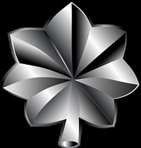 Marines Corp Ranks - Lieutenant Colonel (O-5)