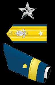 Rear Admiral Lower Half (O-7)